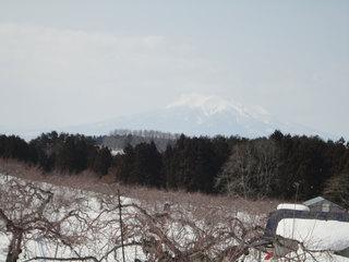 12.03.08-iwaki.jpg